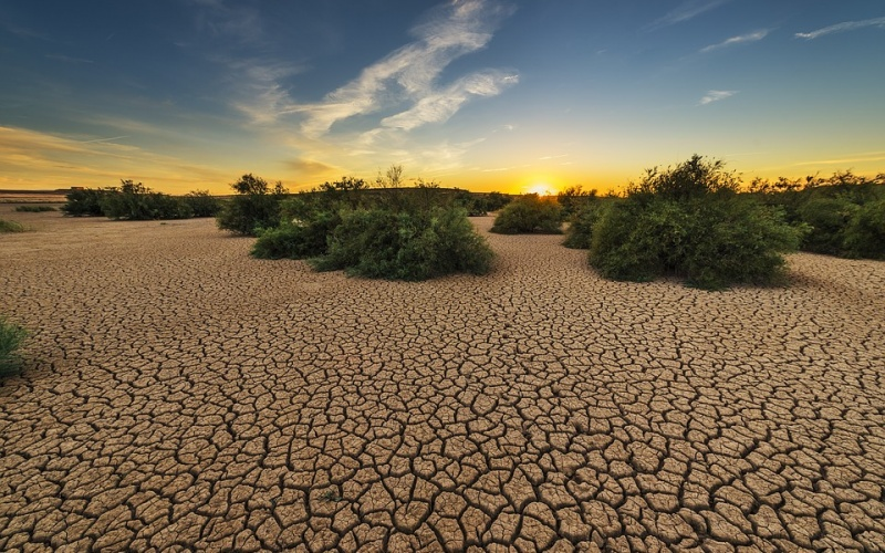 The economic implications of global water scarcity